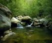 Matillija Creek