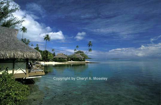 Moorea #1, Tahiti - ID: 362523 © Cheryl  A. Moseley