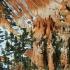 © Donald E. Chamberlain PhotoID# 366615: Bryce Canyon Close Up