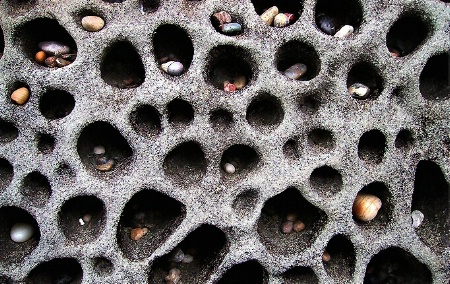pacific pebble condo