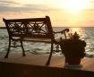 Bench - Sunset
