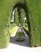 Arched Garden