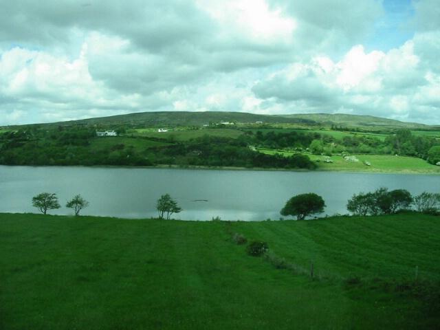 Irish Meadow