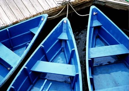 Blue Boats ,Boston