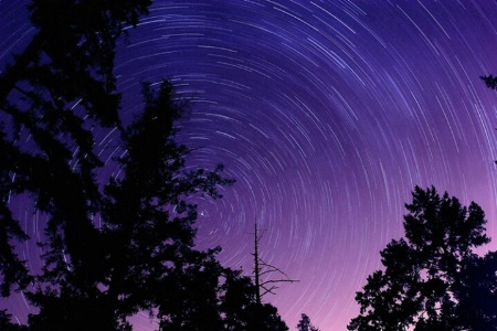Star Trails of the 20D