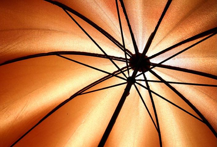 Umbrella Abstract
