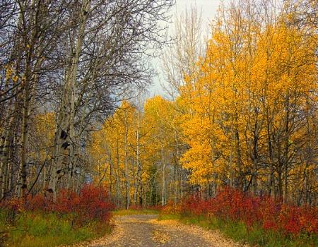 October Lane