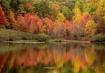 Coopers Rock Lake