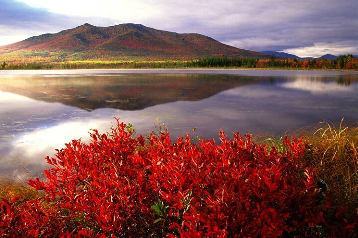 Cherry Pond's Crimson Edge