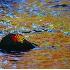 © Jeff Lovinger PhotoID# 572965: Leaf red gold reflection