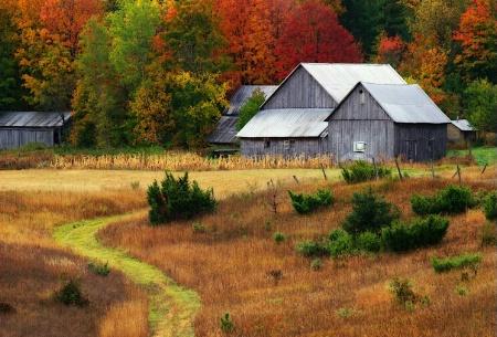 Michigan Farm In Autumn