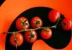 Ripe Tomato Vine ...
