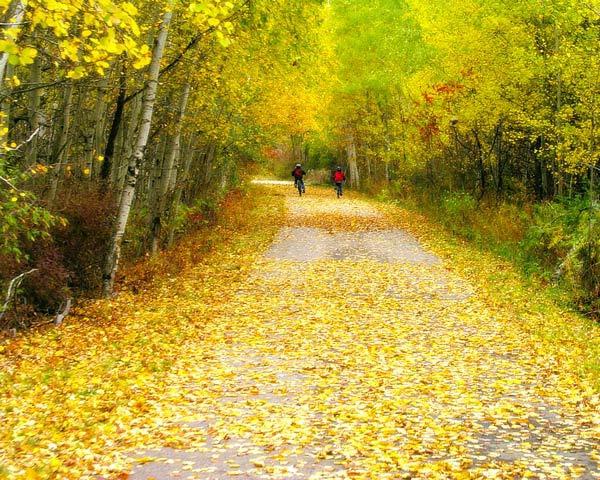 An Autumn Ride Through Montcalm County