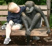 Zoo Pals II