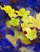 Autumn Flow