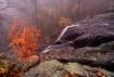 Dark Hollow Falls...
