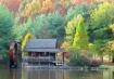 Autumn at the Gri...