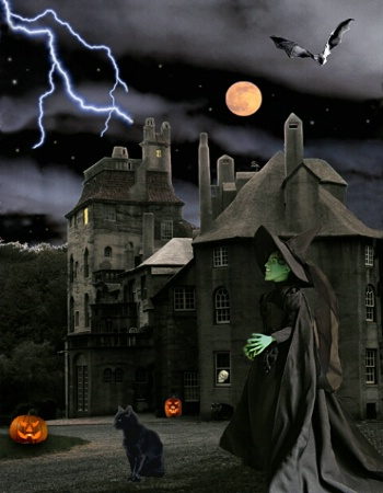 The Witch's Castle