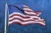 flag fx