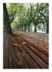 autumn in Ponte d...