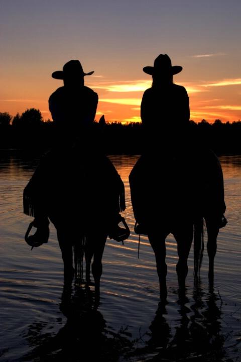 Cowboy Silhouettes On Horseback