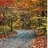 © Deborah Gillham PhotoID # 649222: The road less taken