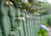 Dream Fence