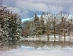 Winter Reflection...