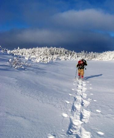 Snowshoeing on Pine Tree Mountain