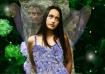 faerie dreams