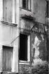 Venice: Geraniums
