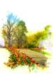 Tulip-Lined Walkw...