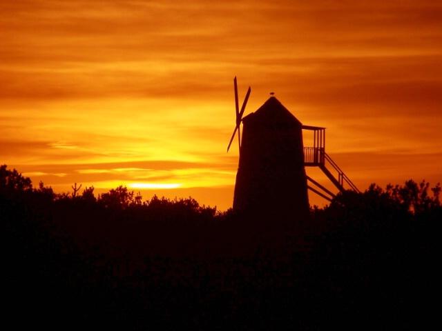 A Tribute To Don Quixote De La Mancha