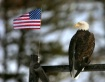 Freedom  X2