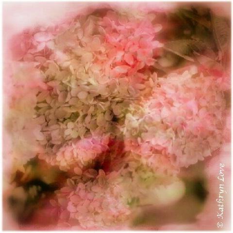 ~Pink~