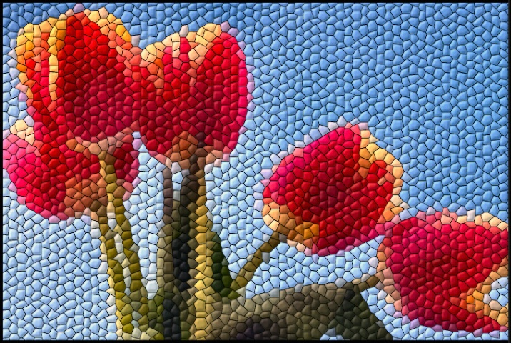 Fragmented Tulips