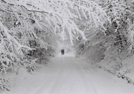 The Romance of Winter