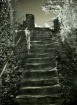 Stairs of Wayside...