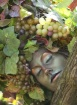 Fruit Of Devine