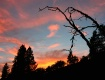 Pastel Sunset wit...