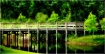 The Bridge (Enhan...