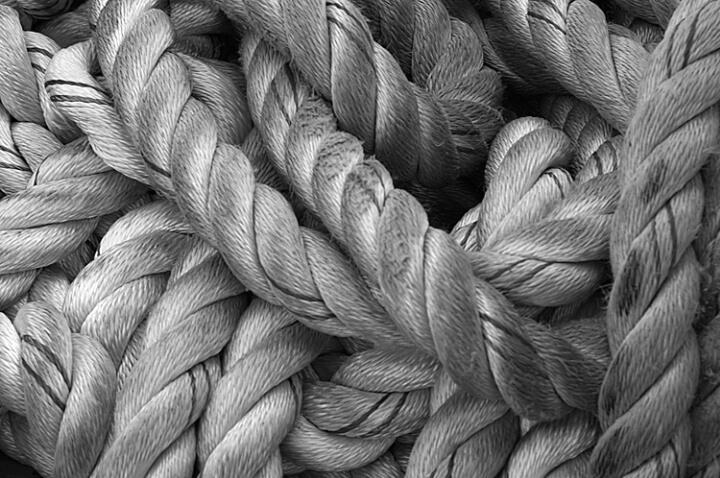 Leading Lines - ID: 511740 © Virginia Ross