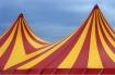 Circus has come i...