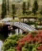 Bridge to Terabit...