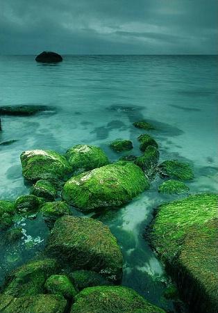 Green Rocks...