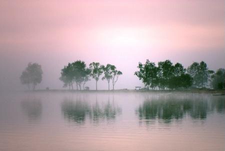 Pink Mist.