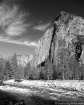 Yosemite Summer (...