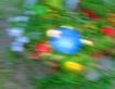 ...floral constel...