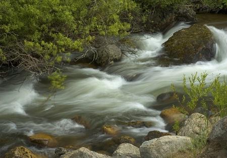 Rushing Flow