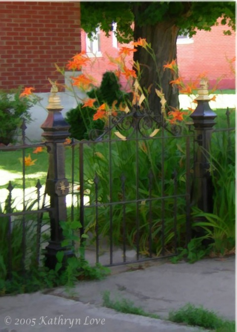 lilies and the gate